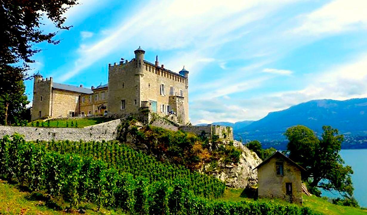 Savoie castle
